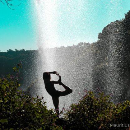 Ayurveda - Eine Einführung