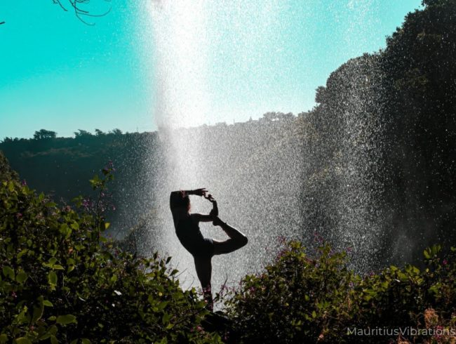 Ayurveda – Eine Einführung