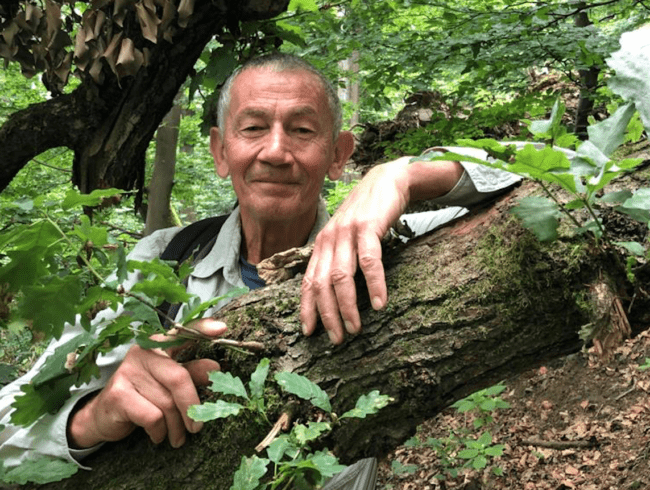 ZEN-Meditation & Achtsamkeit- Ein Einführungskurs mit Tilmann Krämer
